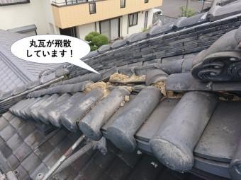 岸和田市の丸瓦が飛散しています
