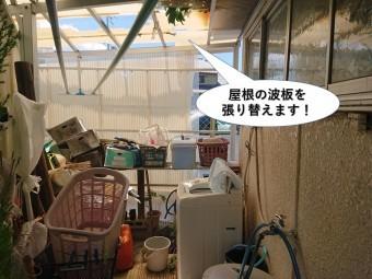 岸和田市の屋根の波板を張り替えます