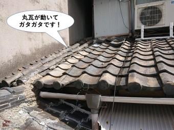 熊取町の下屋の丸瓦が動いてガタガタです