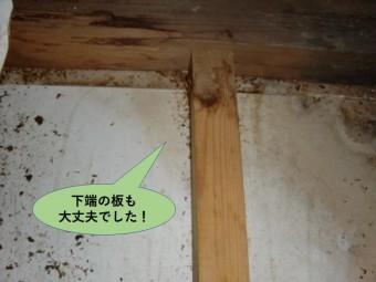 貝塚市のベランダの下端の板も大丈夫でした
