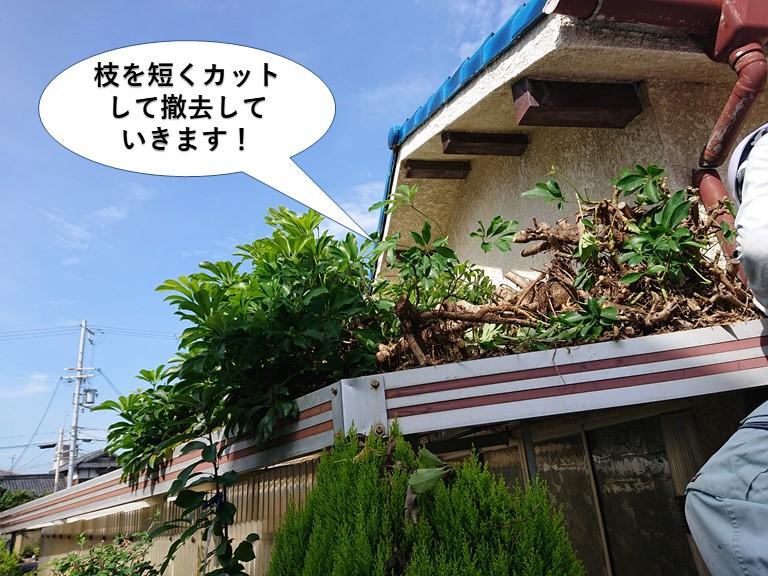 岸和田市の木の枝を短くカットして撤去