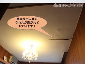 岸和田市の一階のお部屋の雨漏りで天井のクロスが剥がれてきています!