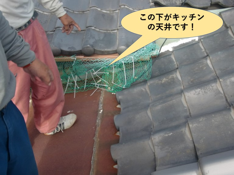 岸和田市のキッチンの取り合いの天井