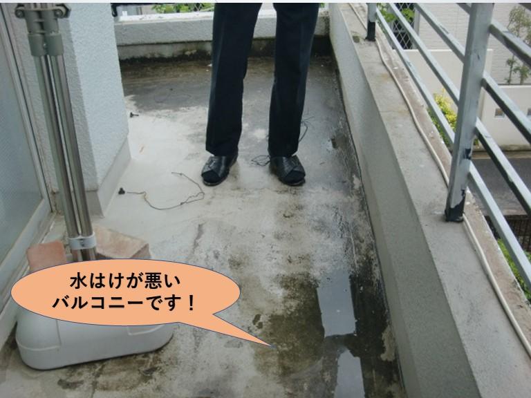 岸和田市の水はけが悪いバルコニー