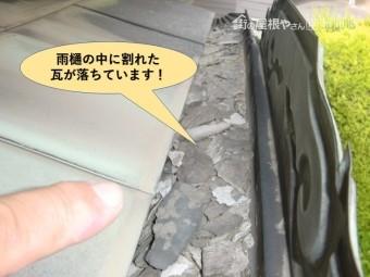 岸和田市で雨樋の中に割れた瓦が落ちています