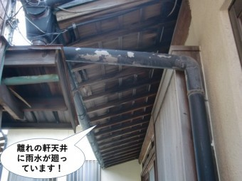 岸和田市の離れの軒天井に水が廻っています