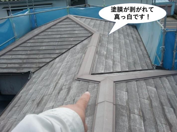 岸和田市の屋根の塗膜が剥がれて真っ白です