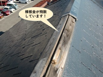 岸和田市の棟板金が飛散!