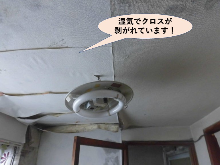 岸和田市の洗面所の天井が湿気で天井クロスが剥がれています