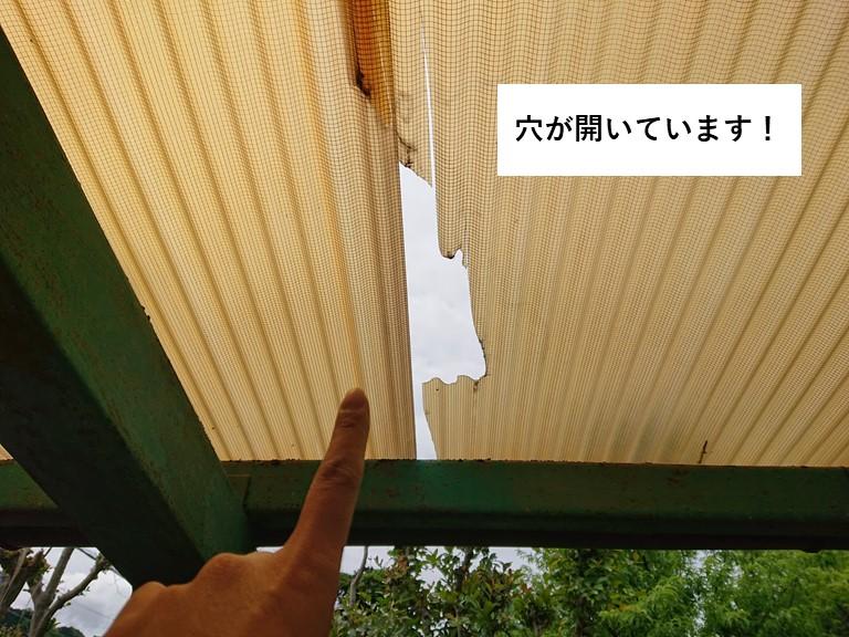 熊取町の波板に穴が開いています
