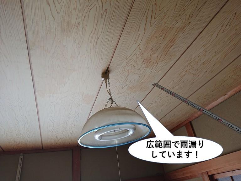 泉佐野市の天井の広範囲で雨漏りしています