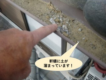 阪南市の軒樋に土が溜まっています