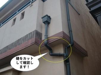 和泉市の樋をカットして確認します