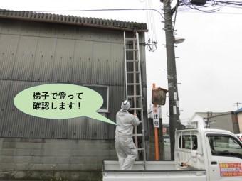 和泉市の工場で梯子で登って確認します!