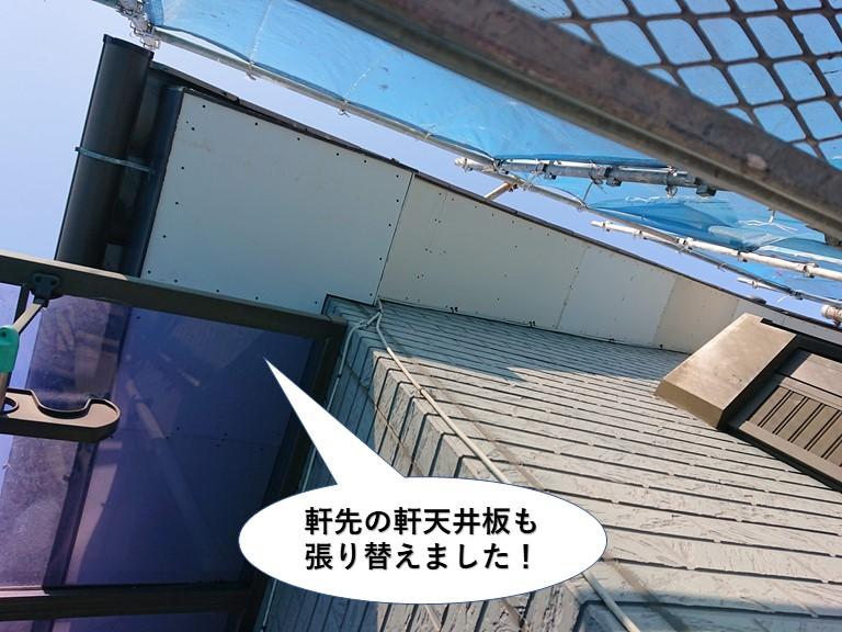 貝塚市の軒先の軒天井板も貼り替え