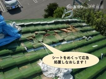岸和田市の屋根のシートをめくってきちんと養生します!
