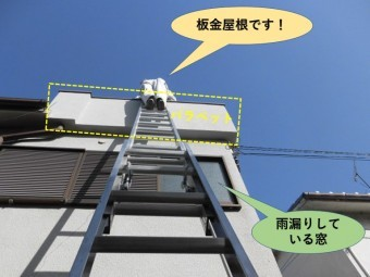 岸和田市の増築部の屋根のパラペット