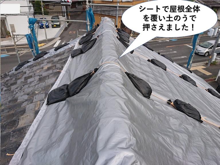 熊取町でシートで屋根養生しました