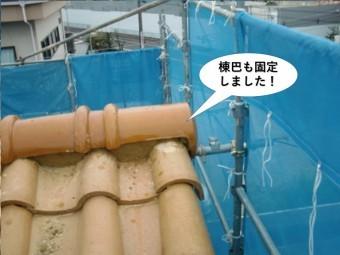 和泉市の棟巴も固定しました