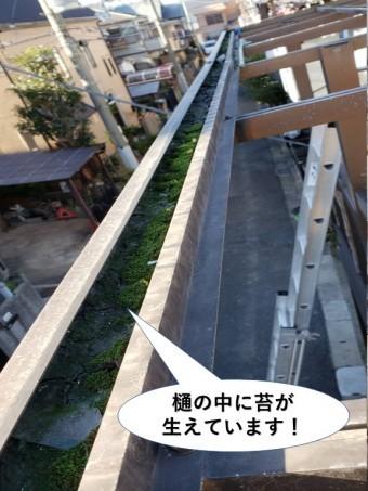 泉佐野市のテラスの樋の中に苔が生えています