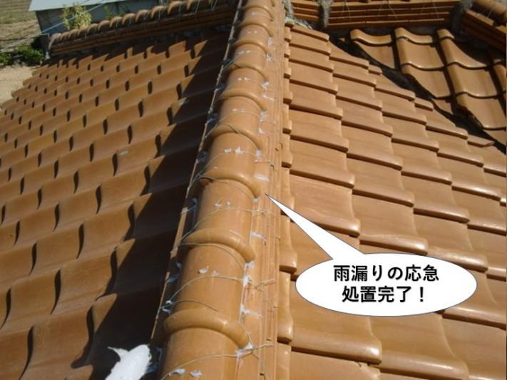 熊取町の雨漏りの応急処置完了