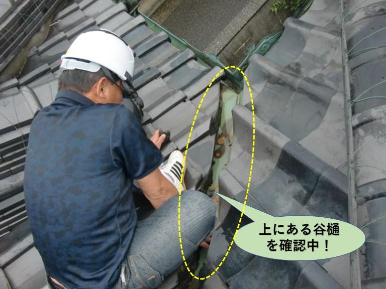 岸和田市の雨漏り箇所の上にある谷樋を確認中!