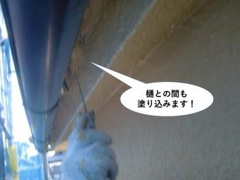泉南市の樋との間も塗り込みます