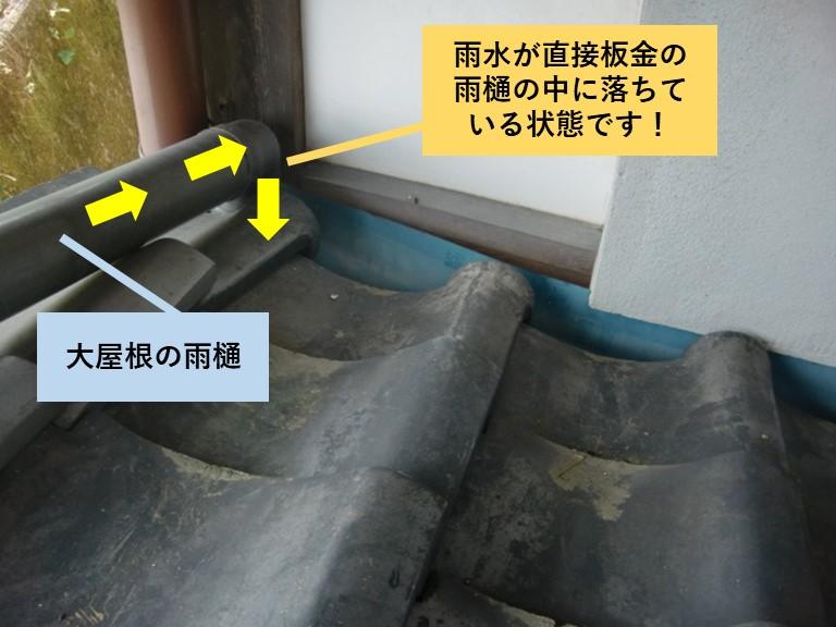 岸和田市の大屋根の雨水が直接雨樋の中に落ちています!