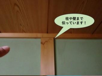 熊取町の和室の柱や壁まで伝っています