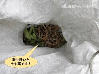 和泉市の樋の中から撤去した土や葉です