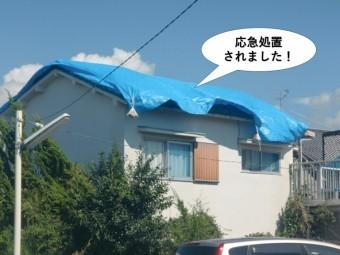 岸和田市の屋根を応急処置されました