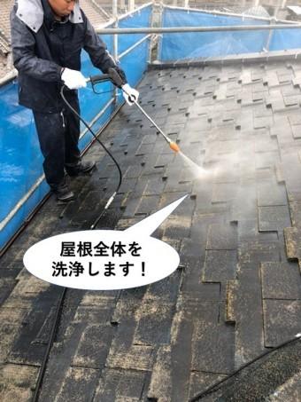 忠岡町の屋根全体を洗浄します