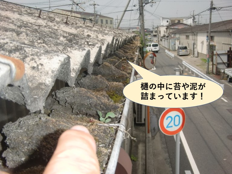 岸和田市の倉庫の樋の中に泥や苔が詰まっています