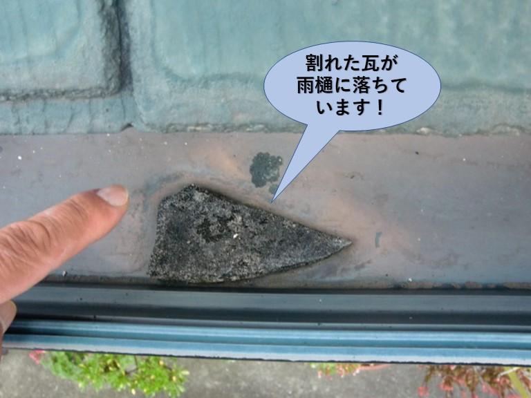 阪南市の割れた瓦が雨樋に落ちています