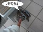 熊取町の庭に落ちていたカラーベストです
