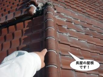 熊取町の長屋の屋根です