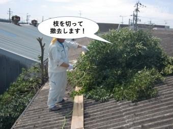 岸和田市の木の枝を切って撤去します
