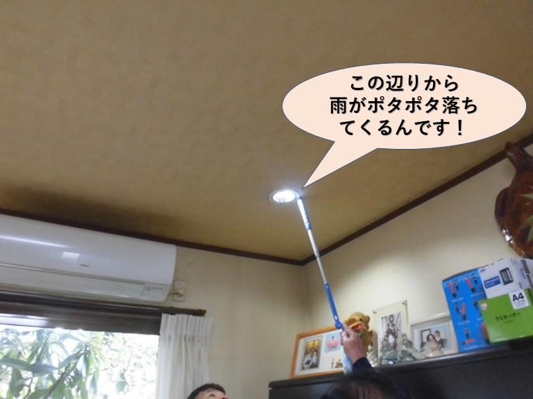 岸和田市の天井の照明器具の隙間から雨漏り発生