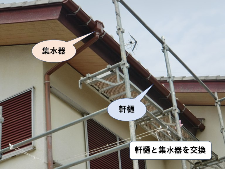 和泉市の軒樋と集水器を交換