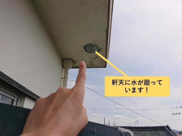 和泉市の軒天に水が廻っています