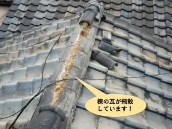 貝塚市の棟の瓦が飛散