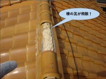 泉大津市の棟の瓦が飛散