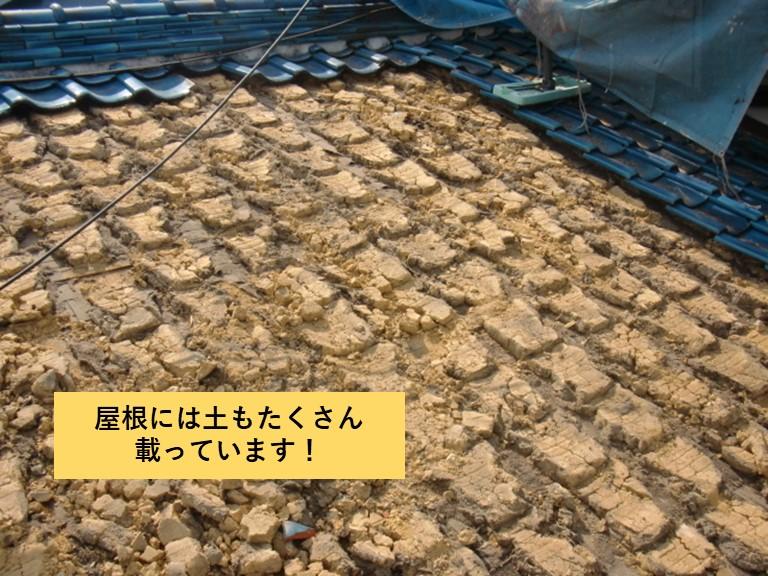 忠岡町の屋根には土もたくさん載っています