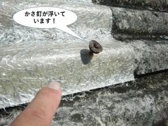 和泉市のスレートを留めているかさ釘が浮いています