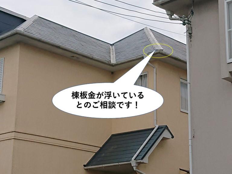 忠岡町の浮き上がった屋根の棟板金をビスで固定しました!