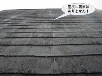 岸和田市の屋根に異常はありません