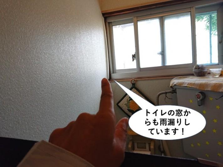 泉大津市のトイレの窓からも雨漏りしています