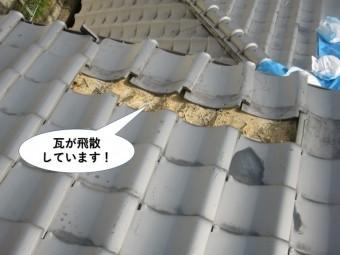 岸和田市の大屋根の瓦が飛散しています