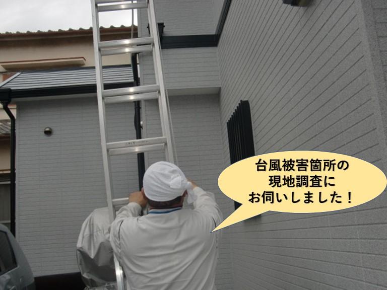 岸和田市の台風被害箇所の現調