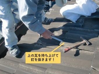 和泉市の上の瓦を持ち上げて釘を抜きます!
